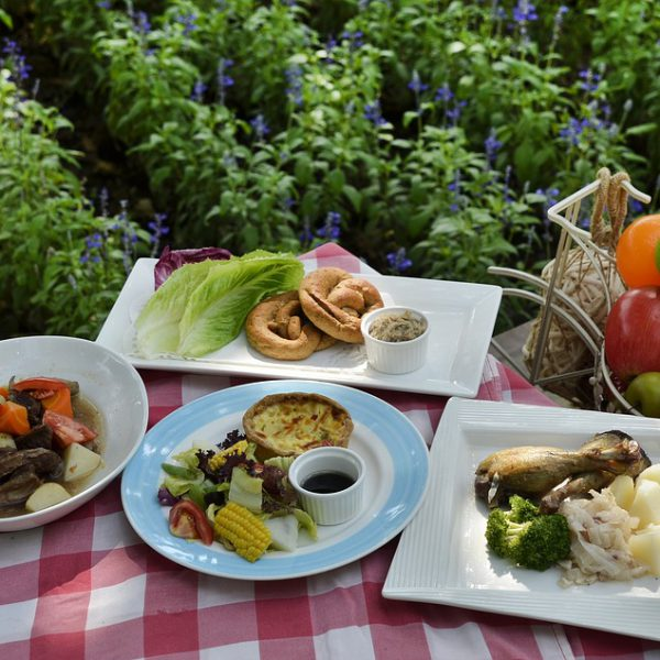imagen picnic